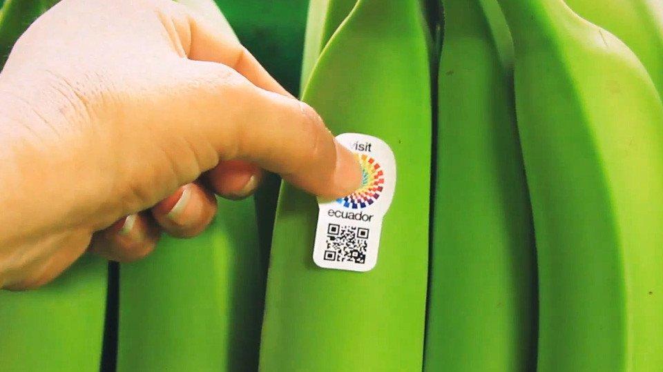 ecuador-ministry-tourism-banana-ambassador